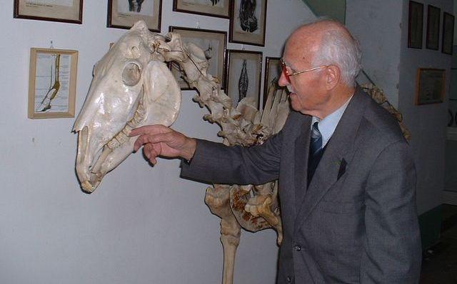 Dr. Sótonyi László